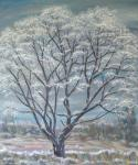 Frosty Tree at Mill Green [ oil on canvas ]